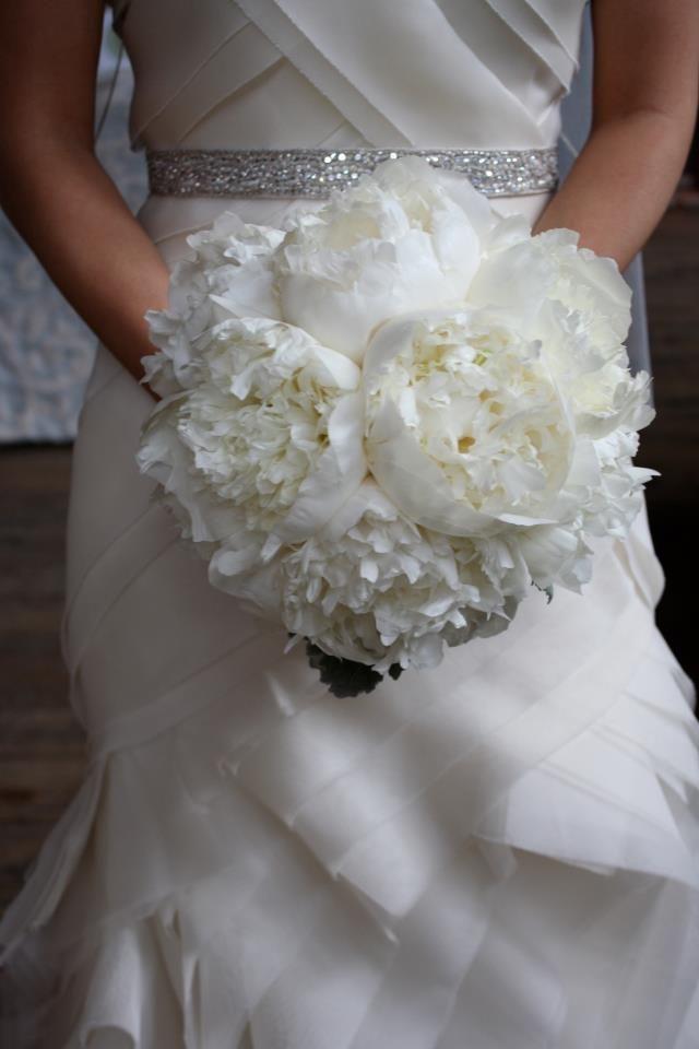 Wedding - Classic Beauty