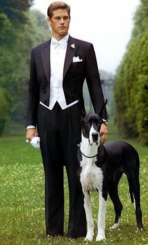 زفاف - لطيفة جدا! بواسطة جاني الخطرة