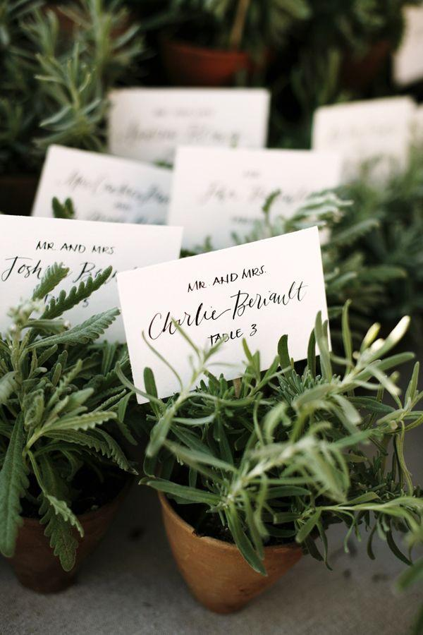 Hochzeit - Kleine Töpfe der Kräuter für die Tischkarten.