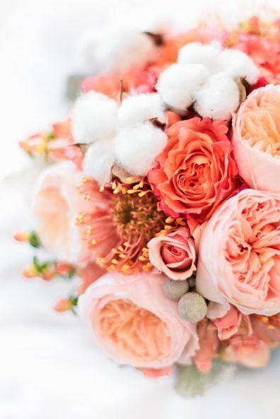 Peach Garden Rose garden wedding - love the peach garden roses #2040203 - weddbook