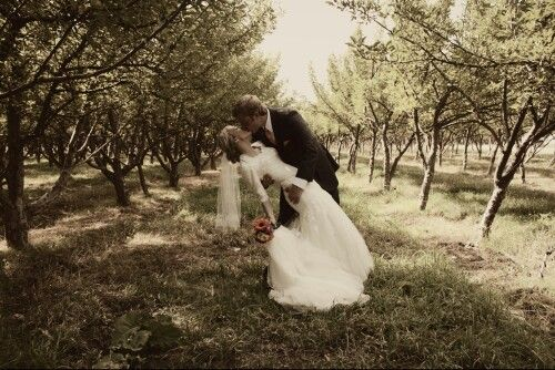 Wedding - Wedding Photo In Trees