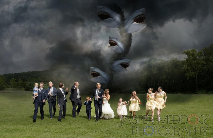 Photo sharknado 2042854 weddbook