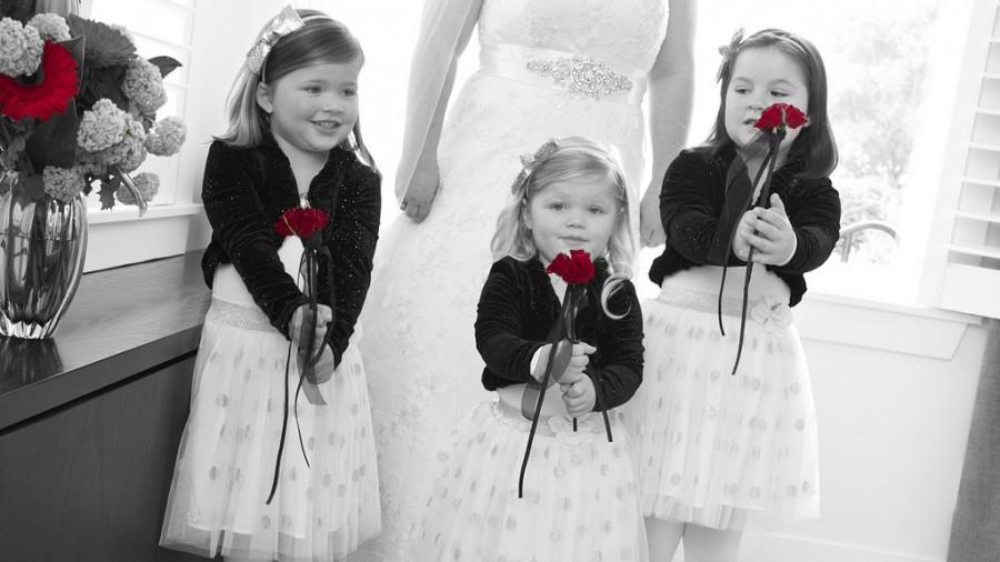 Wedding - Charl And Jarrod's Wedding 2013