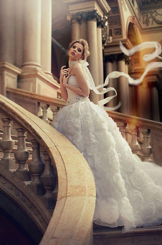 Düğün - Fildişi