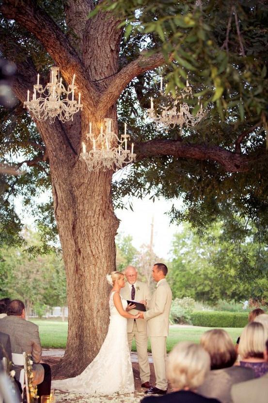 زفاف - الديكور: تضيء ليلة