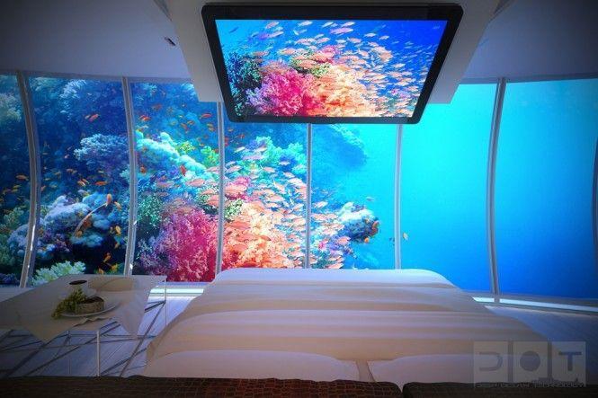 زفاف - فندق تحت الماء - دبي