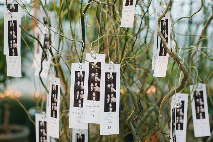 Mariage - Botanique Dream: Dana Whitaker et à Farmington Hills, MI