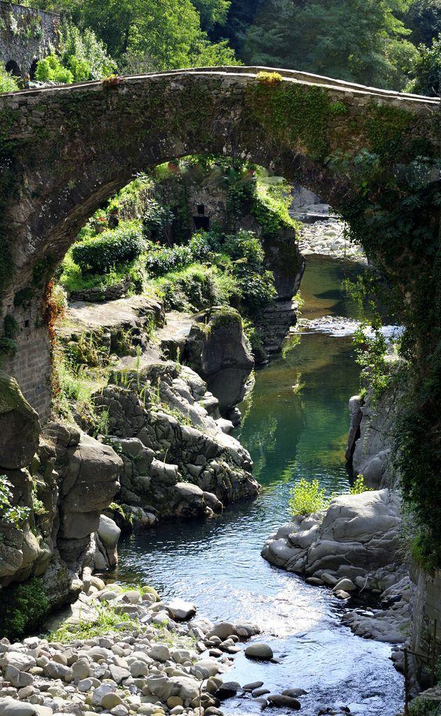 زفاف - جسر من القرون الوسطى، إيطاليا (بواسطة Ornedra)