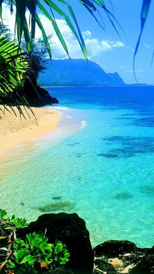 Hochzeit - Kauai Hawaii ~