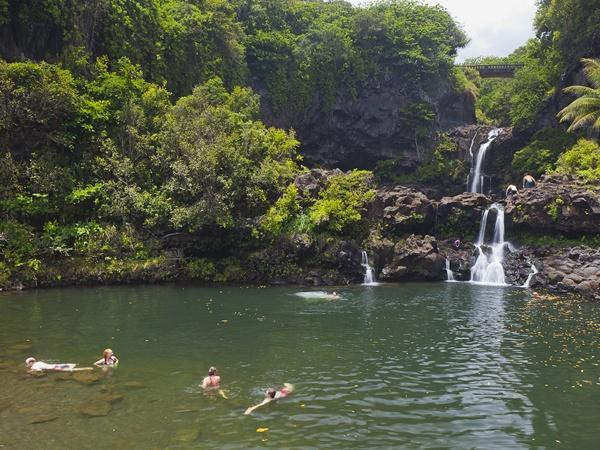 Wedding - Photo Gallery: Maui's Hana Highway