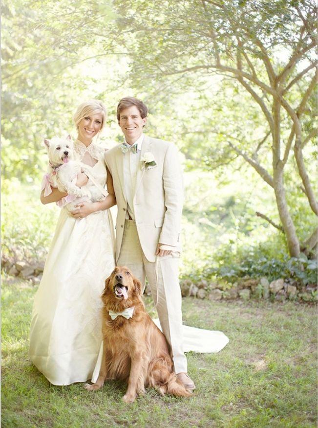 زفاف - الكلاب في حفلات الزفاف