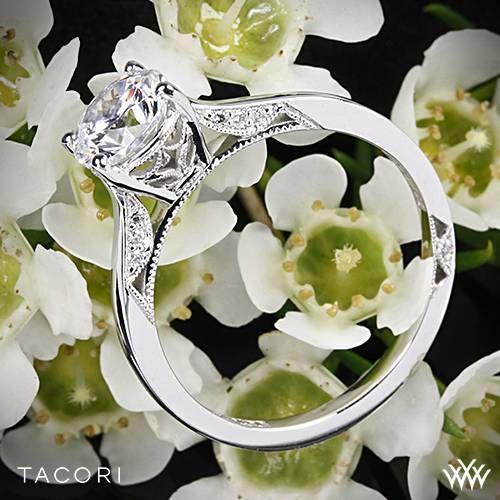 Wedding - 18k White Gold Tacori Dantela Crescent Motif Solitaire Engagement Ring
