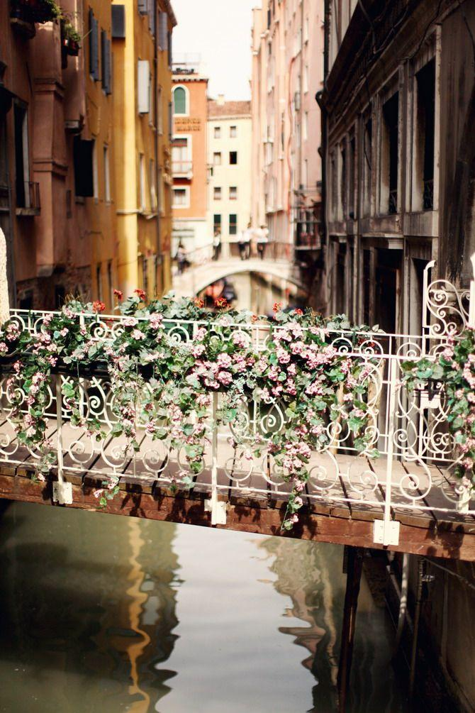 Wedding - Bridge With Roses In Venice