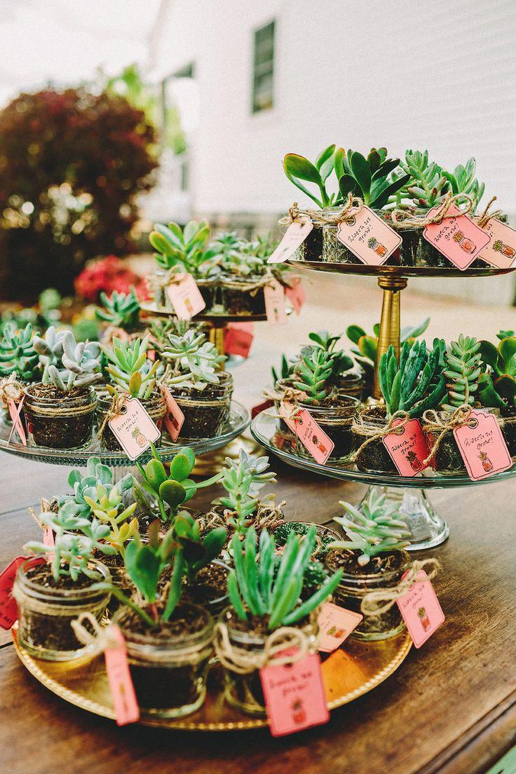 Green Wedding Potted Succulents Favors 2059276 Weddbook