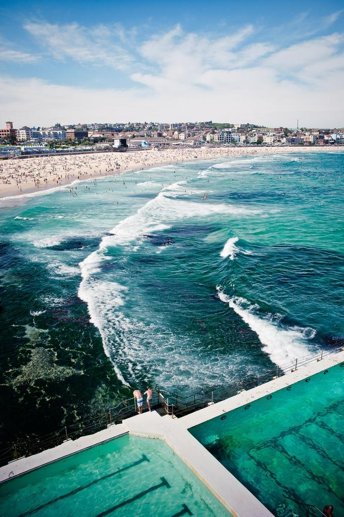 زفاف - شاطئ بوندي، سيدني، أستراليا