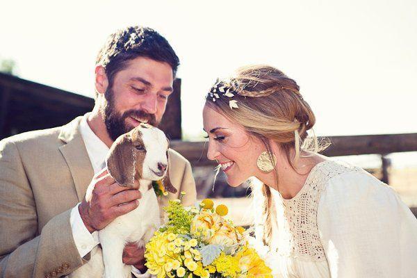 Wedding - Pets @ Your Wedding