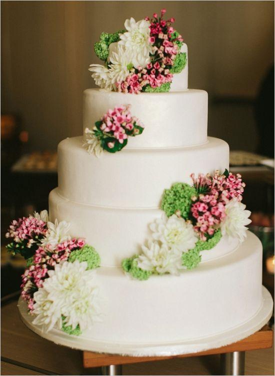 زفاف - حزب ضوء الزفاف