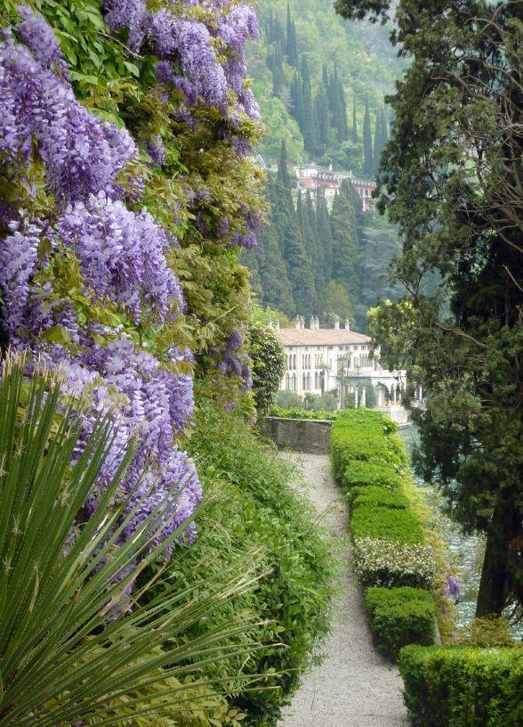 Wedding - Wisteria At Lake Como