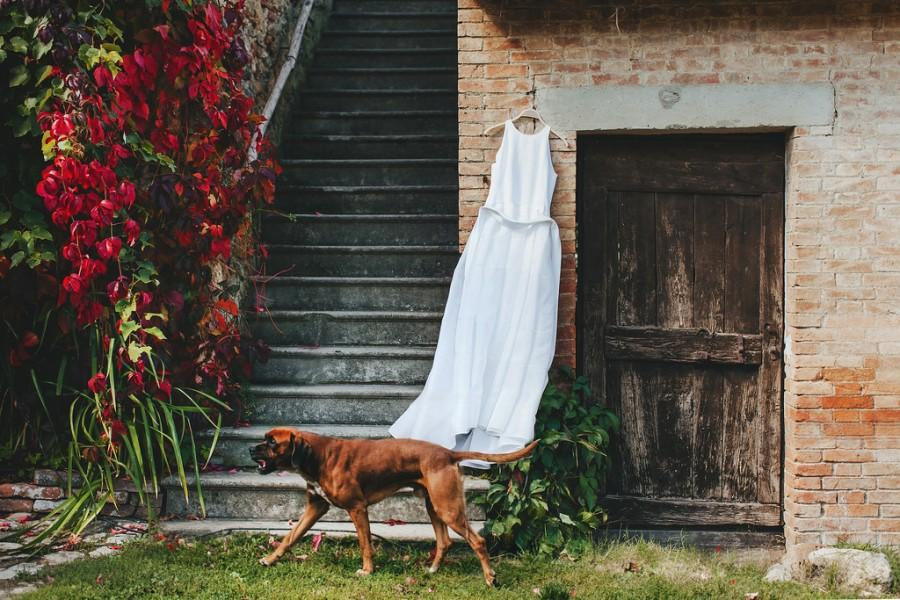 Wedding - Wedding Preparations In Tuscany