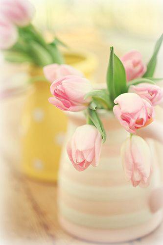 Hochzeit - Schöne Frühlings-Tulpe-Arrangements ...