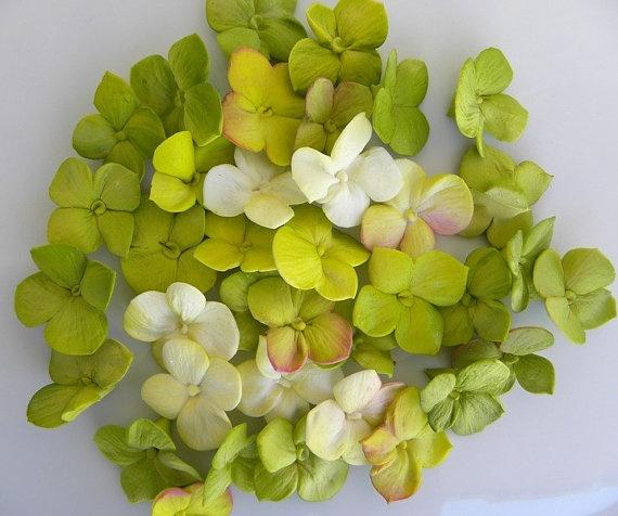 Конфеты из сухофруктов рецепт пошагово