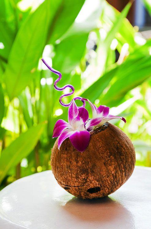 Noix De Coco Decoration Mariage : Decoration noix de coco mariage