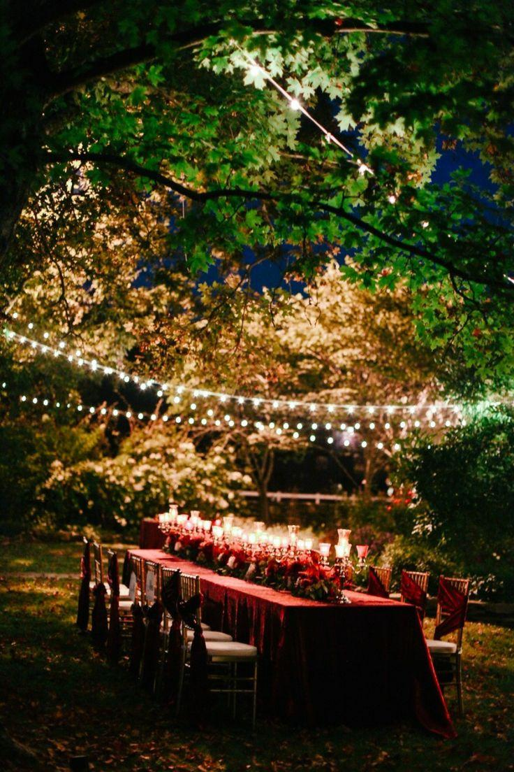 Wedding - Christmas Cedarwood Wedding