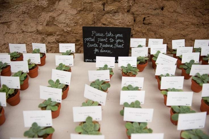 Succulent Favors Escort Cards