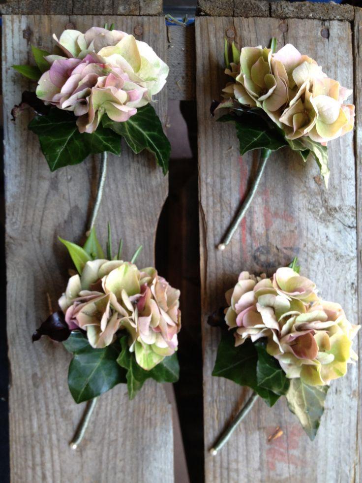 Boutonnieres hydrangea buttonholes 2067632 weddbook - Chemin de table fleurs naturelles ...