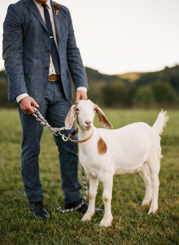 زفاف - مزرعة ستايل زفاف إلهام