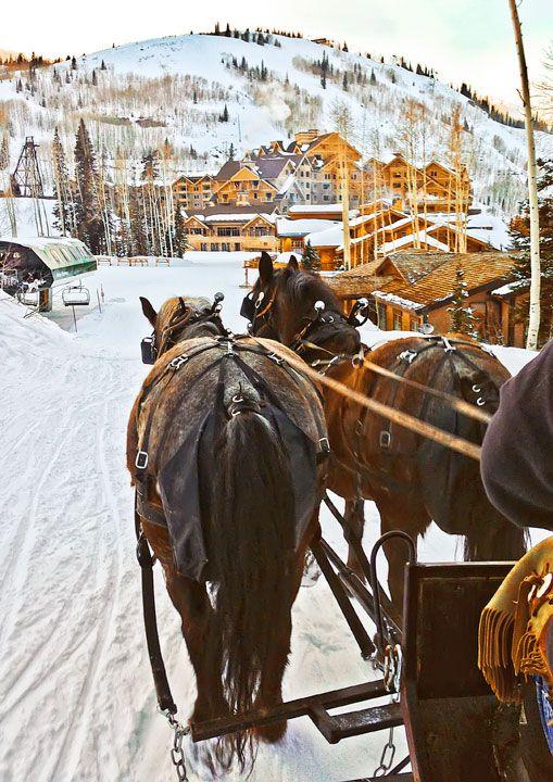 زفاف - الزلاجة ركوب تجرها الخيول.