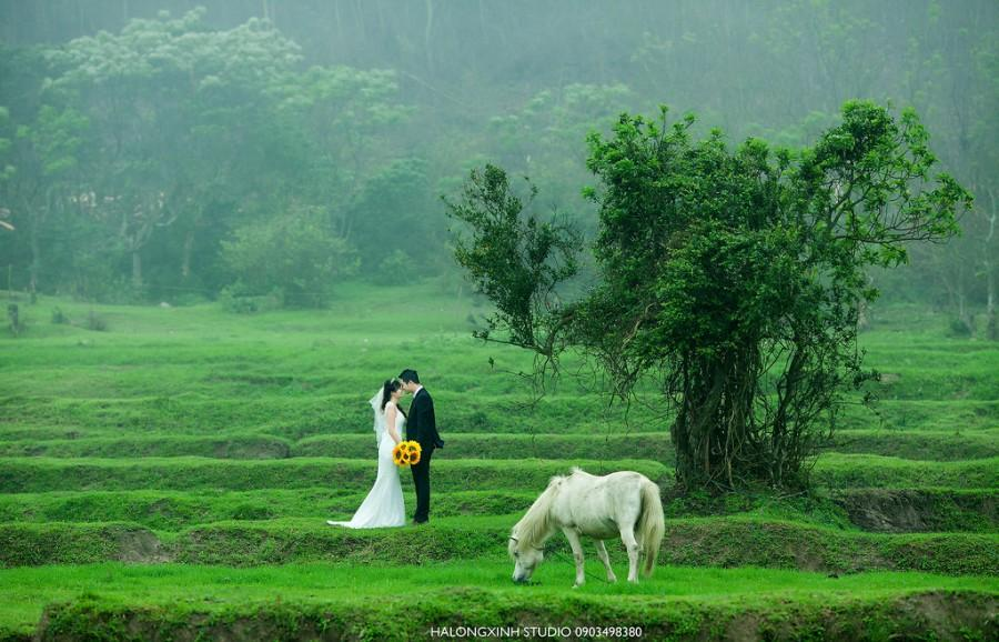 Mariage - Noi Chi Có Anh Va Em