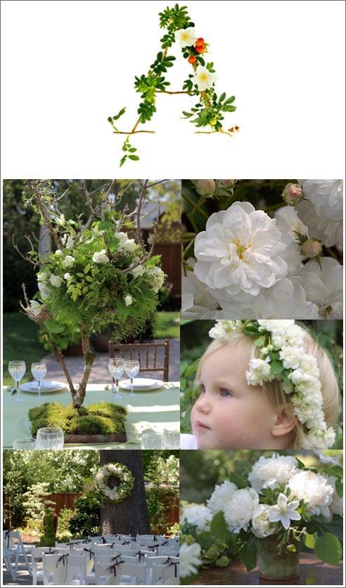 Mariage - Mariage blanc Jardin