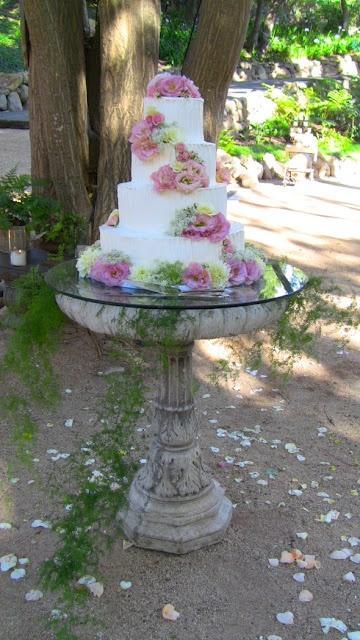 Wedding - Weddings