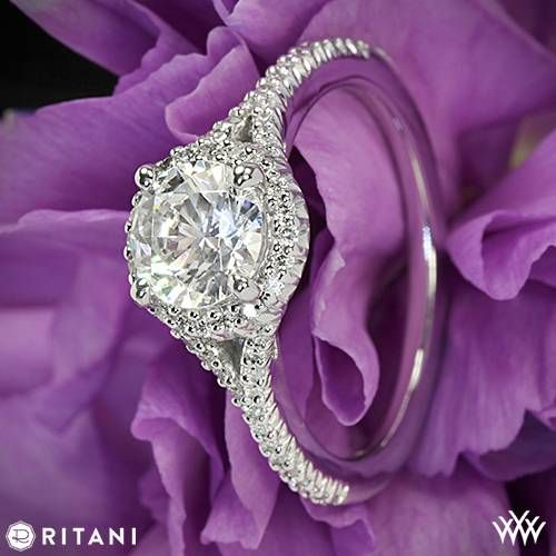 Mariage - Ritani rencontre Whiteflash