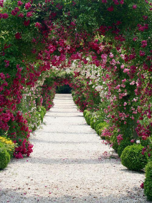 April Spring 39 Sleeping Beauty 39 Easter Secret Garden