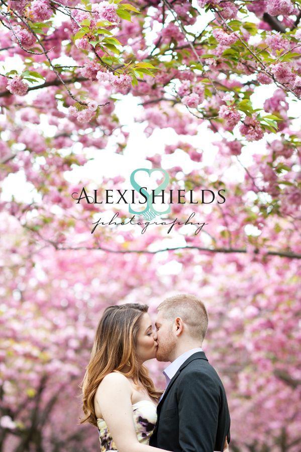 Wedding - Cherry Blossom Wedding...