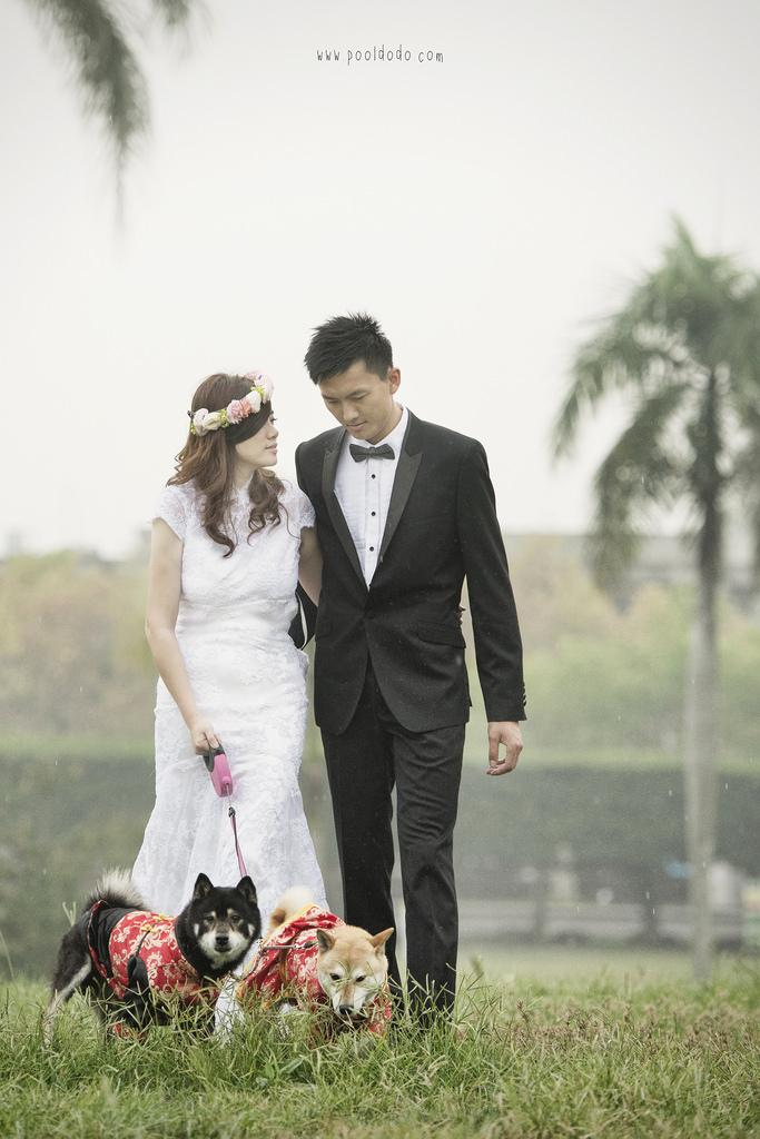 Wedding - [Wedding] 2+2