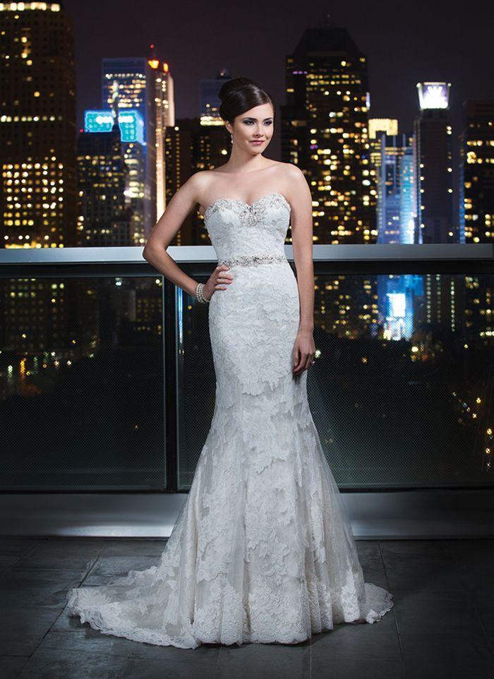 زفاف - جاستن الكسندر الزفاف