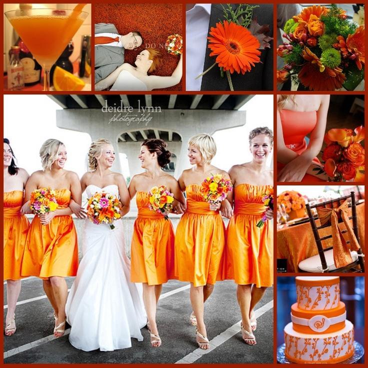 Orange wedding orange wedding theme 2098082 weddbook orange wedding theme junglespirit Gallery