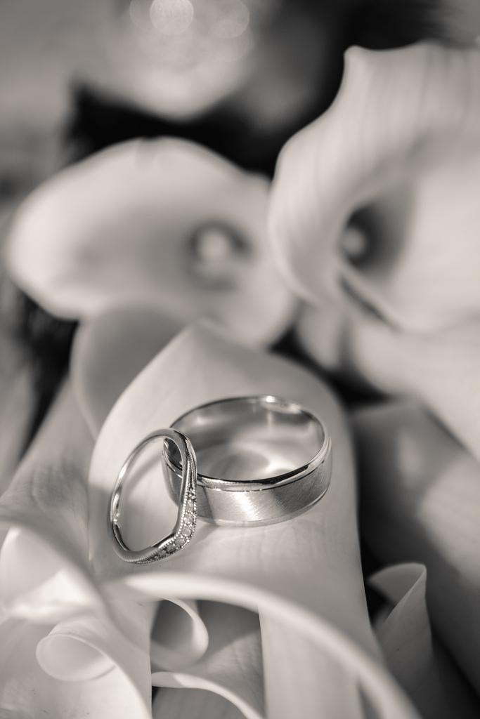 Wedding - Rings And Flowers