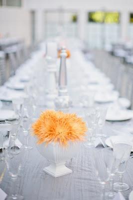 Düğün - Modern Düğün // Bodas Modernas