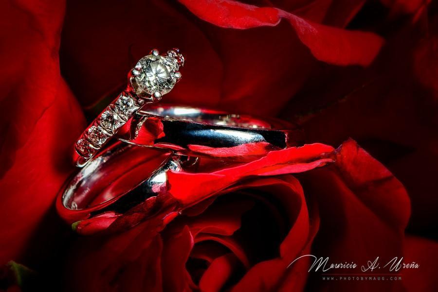 Wedding - Wedding Rings 2