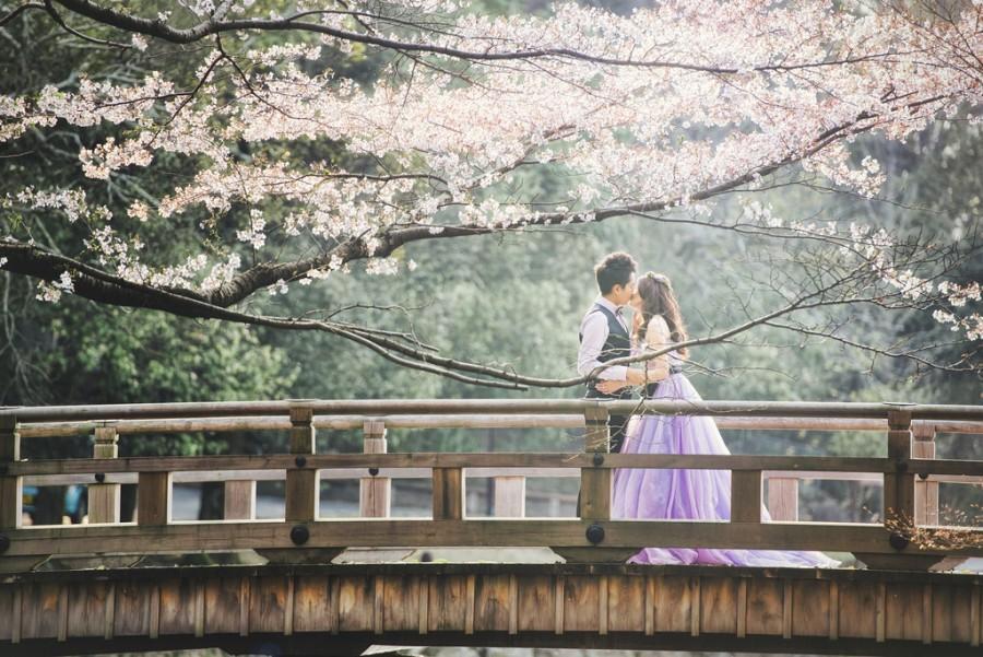 Hochzeit - [Hochzeits-] Sakura