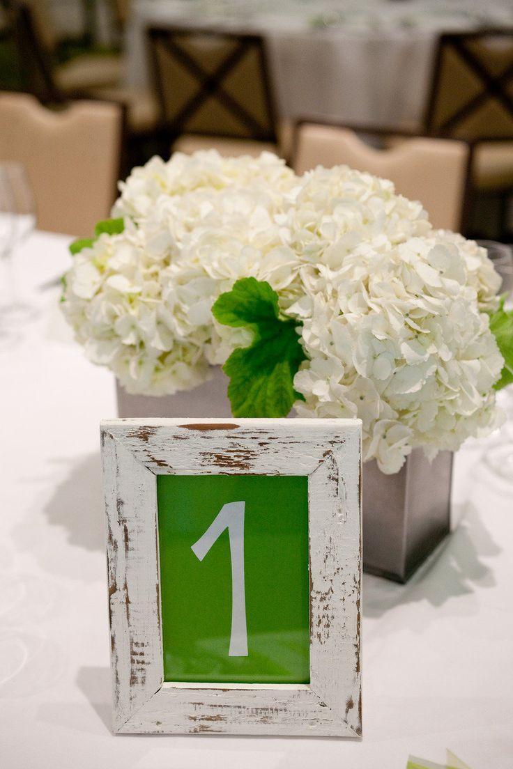 زفاف - :: الضوء الأخضر الزفاف ::