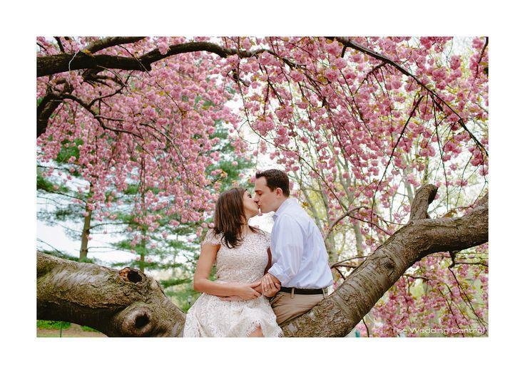 Hochzeit - ♥ ~ ~ ♥ • Kirschblüten-Hochzeit