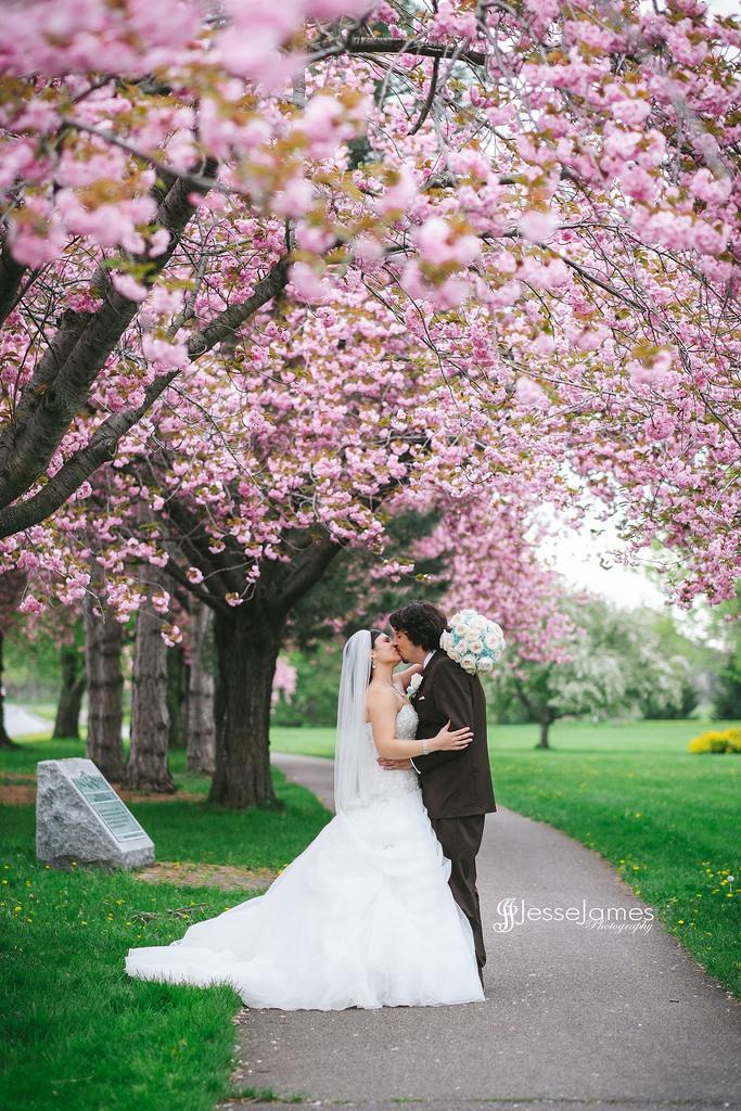Hochzeit - Kirschblüten-Hochzeit