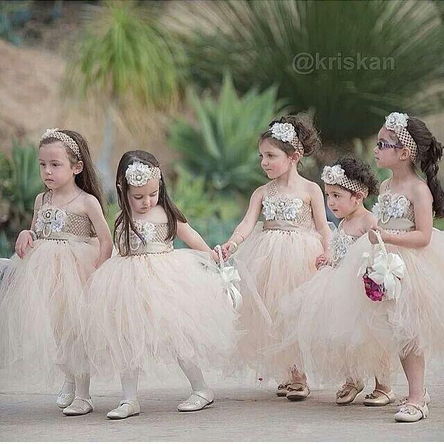 Mariage - Les filles de fleurs et porteurs d'alliances