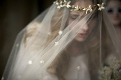 Alan rhine wedding
