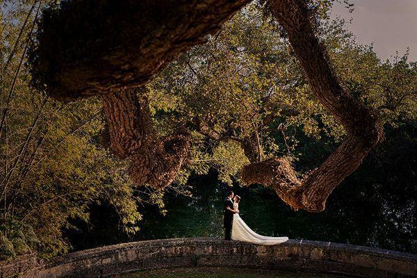 Свадьба - Удивительные Свадебные Фотографии
